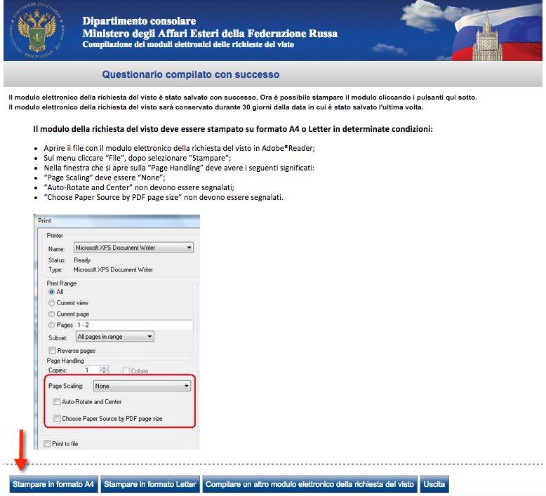 8 Modulo di richiesta del visto Russia