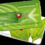 Trasporto pubblico San Pietroburgo - Carta Podorozhnik